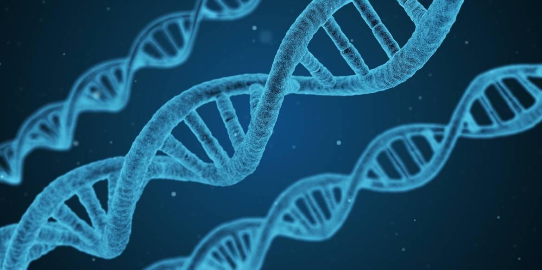 Congresso annuale dell'Associazione Genetica Italiana (22-24 settembre 2021)