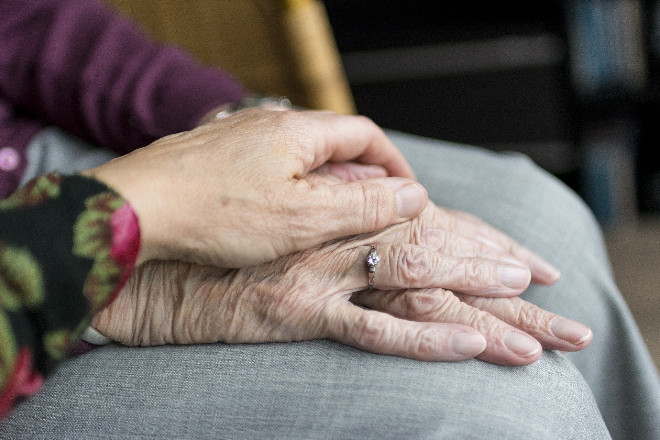 Invecchiamento: tra saggezza e resilienza del sistema immunitario.