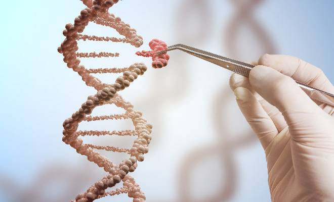 nobel-a-crispr-fondamentale-per-linnovazione-nelle-piante-coltivate-e-in-medicina-nella-terapia-genica-1602182266