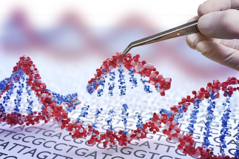 Boccia-ti in genetica: l'assurdità scientifica del termine OGM