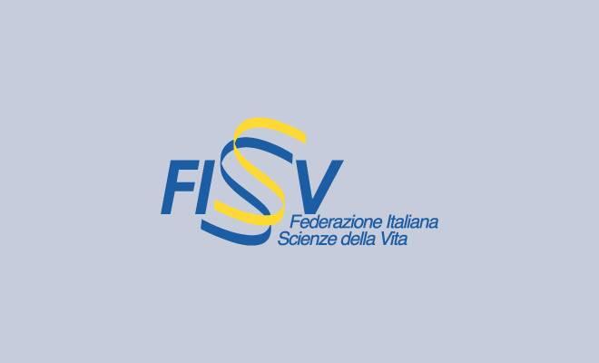 xi-convegno-fisv-2009-