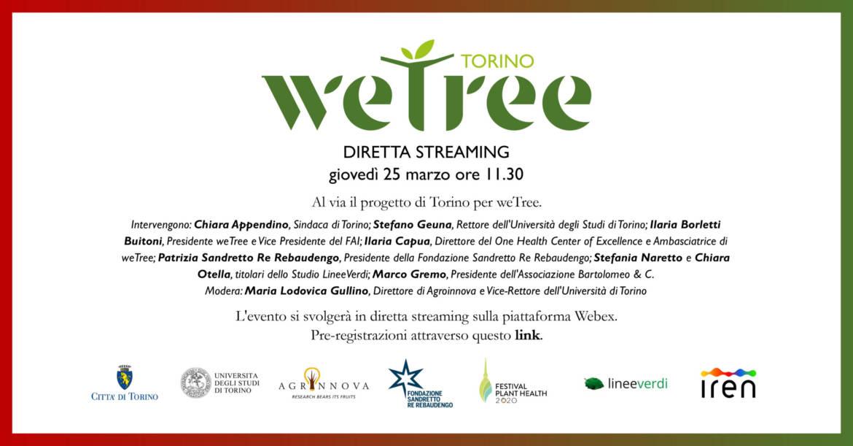 Wetree – diretta streaming.