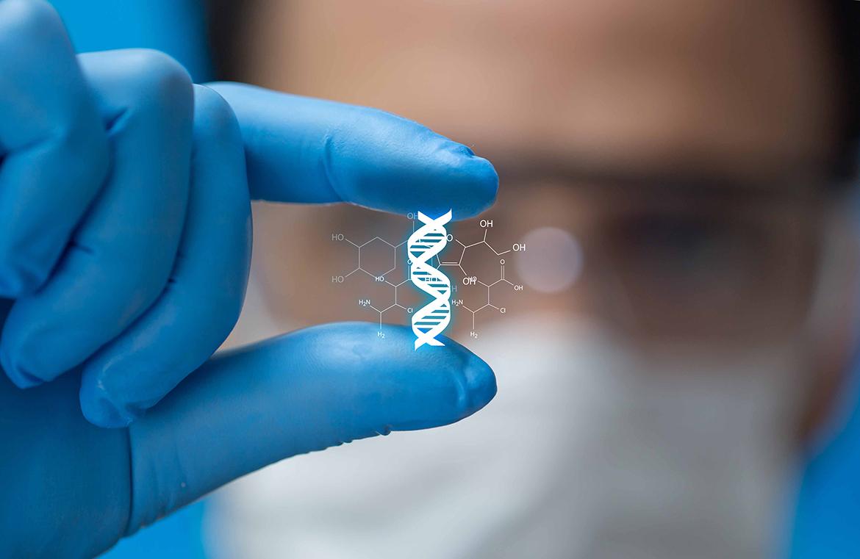 Nello studio dei geni la risposta che cercano molte discipline
