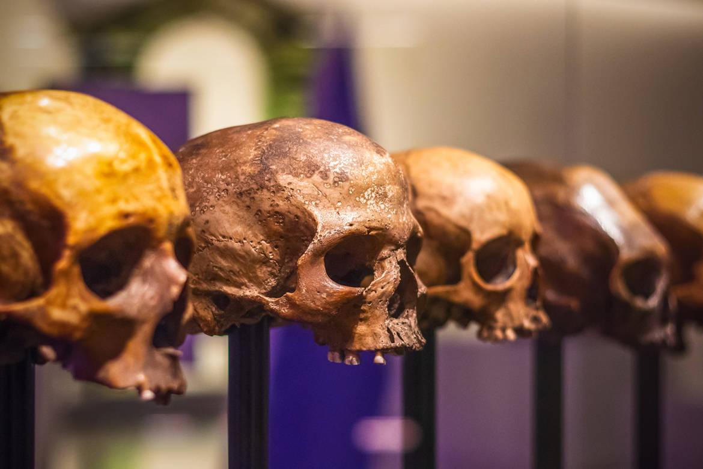 Antropologia, le risposte alle grandi e ataviche domande dell'umanità