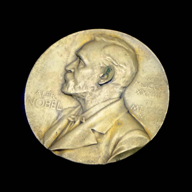 Fisica, ecco perché il Nobel a Parisi è prezioso anche per le Scienze della vita